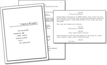 Holiday Video Script